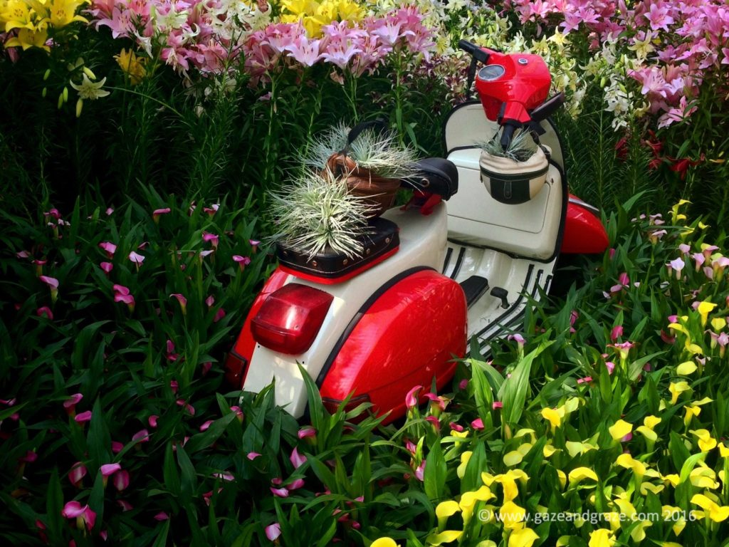 A decorated vespa set amidst the lilies in Lilytopia