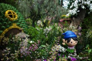 Gardens by the Bay Orchid Fest 2016 2016-08-05 -1