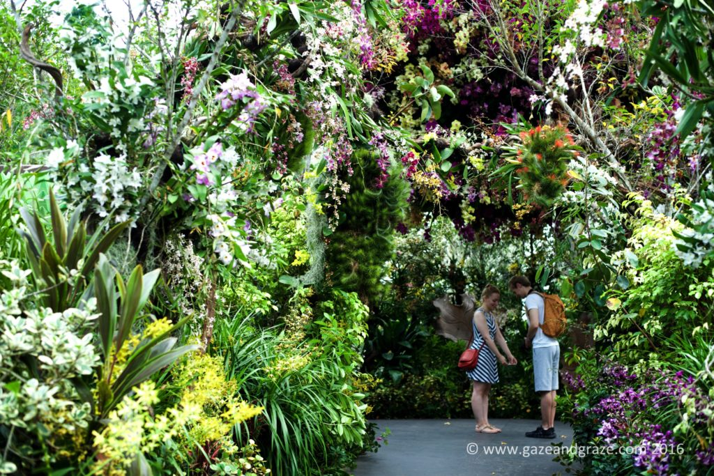 Tourists take a selfie underneath the orchid display